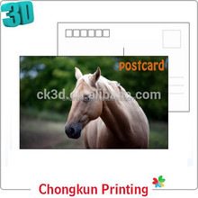 CE/EU/SGS standard factory made cute animal horse 3D lenticular postcards