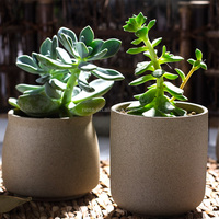 Hot Sale Table Decor, Pottery flower Planter pot in sandstone finish