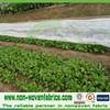 Nonwoven Ground Cover Pp Spunbond Polypropylene Fabric