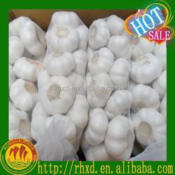 China Wholesale garlic supplier Low price/Fresh Garlic