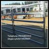 australia hot sales galvanized round pen cattle rail panels(heavy duty/ high zincing)