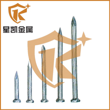 Hardened enough good quality galvanized long concrete steel nails