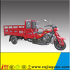 Water Cooled Cargo Trike Motorcycle With New Design