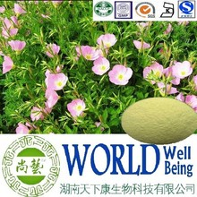 Hot sale Evening Primrose extract/Oenothera biennis seed extract/Regulate brain function plant extract