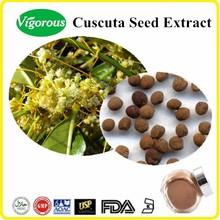 Free sample Cuscuta Seed Extract/Cuscuta Seed Extract Powder/Cuscuta chinensis seed powder