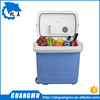 32L AC&DC electric mini car cooler box