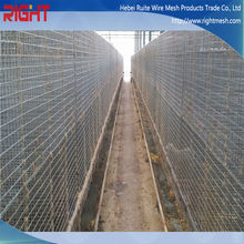Welded wire mesh panel mink cage/stainless steel mink cage