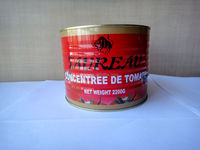 High lycopene hot sell canned tomato paste with easy open lid