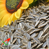chinese wholesale sunflower seeds price America type 5009 24/64