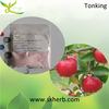 Top Quality 17%-25% vitamin c acerola cherry extract powder