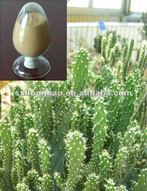 Oregano pills for weight loss picture 3