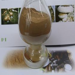 Natural Black cohosh Extract Triterpenoid Saponins Are Availble With favorable Price