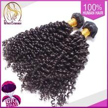 Brazilian Human Hair Sew In Weave, Kinky Curly Wholesale Hair, Mink Brazilian Hair