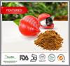 China food grade wholesale 100% Natural Guarana Extract, Caffeine