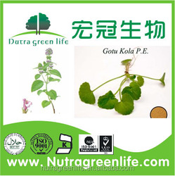 Gotu Kola Extract/free sample HACCP KOF-K FDA certified centella asiatica extract,natural 10% 20% total triterpenes asiaticoside