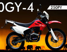 China motorcycle 250cc cheap used dirt bikes ZF250GY-4