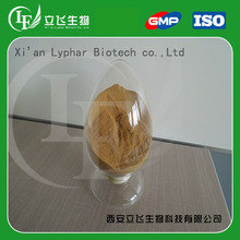 Lyphar Supply High Quality of Coleus Forskohlii Extracts