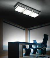 Lanfu pure white good quality two years warranty ceiling mounted picture light