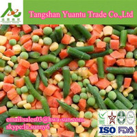 frozen mixed vegetables importer from dubai