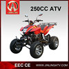 Cheaper 250cc Quad ATV Quadricycle For Sale