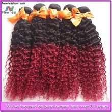 brazilian human kinky curly remy hair weaving 99j
