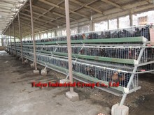TAIYU 120 And 160 Birds Design Chicken Cages For Kenya Poultry Farm