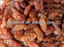 dark sultana raisin bulk dried fruit 2013new crop