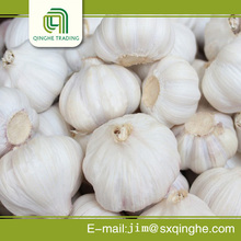 mesh bag package specification pure garlic