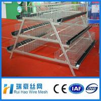 Bottom price welded chicken cage wire mesh