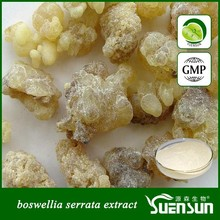 supply high quality boswellia serrata extract with Boswellic Acid