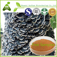 30%-50%Polysaccharide China manufacturer Yun Zing Extract Coriolus Versicolor Extract