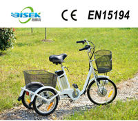 electric tricycle for disabled
