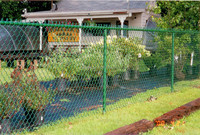 Cheap Price Chain Link Fence Panels, PVC Chain Link Fencing