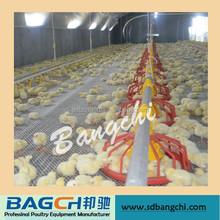 büyük indirim kullanılan otomatik tavuk besleme sistemi
