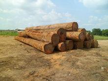 Cameroun AZOBE Round Logs