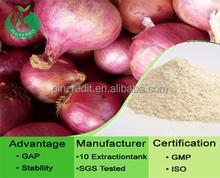 GMP factory supply top quality Onion Freeze dry powder/Onion Freeze dry powder