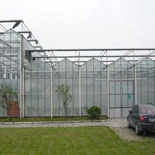Supplier of Plastic film mini greenhouse tunnel W3xL6xH2m for sale