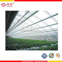Polycarbonate hollow sheet with green house plastic film