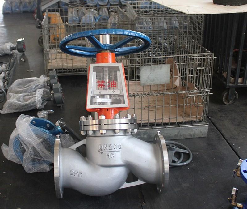 Oxygen globe valve