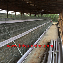 Wholesale Chicken Cage For Laying Hens Prices