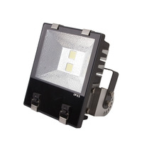 Meanwell driver sports outdoor led flood light
