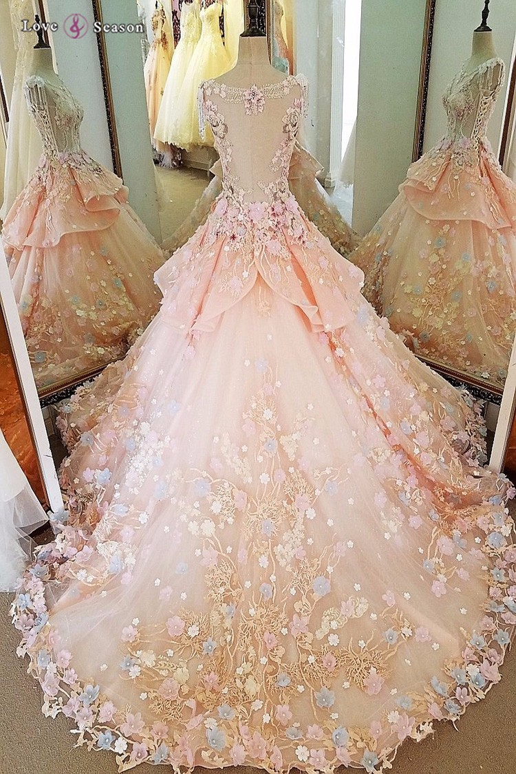 Ls00022 Ball Gown Dresses Heavy Applique See Through Pink ...