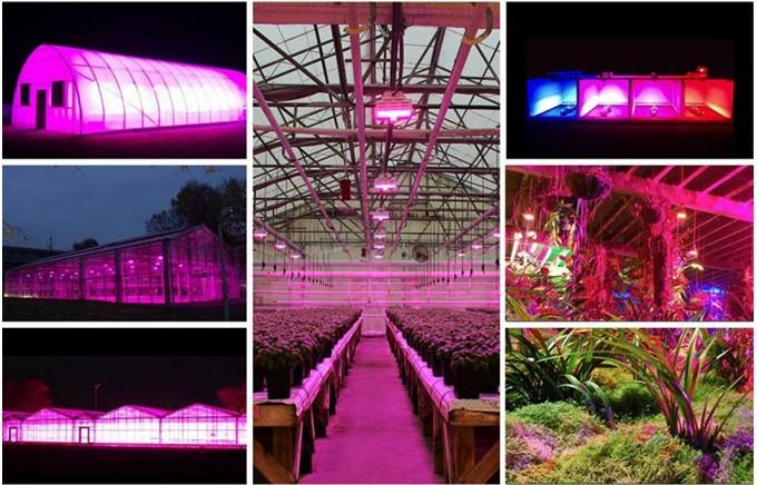 Best led strip grow plant light for micro greenscp200 3ft 90cm 40w best led strip grow plant light for micro greens3ft 4ft 60w waterproof aluminium led aloadofball Images