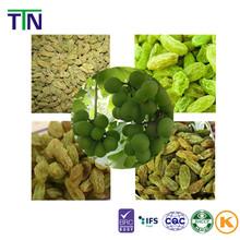 TTN 2015 Wholesale Sultana Raisin Dried Price