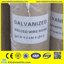 low price welded wire mesh/ galvanized welded wire mesh/ PVC coated wire mesh fence supplier