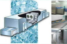 IQF tunnel blast freezer for seafood, vegetable , poultry