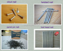 polished common nails with smooth/twisted shank made in China