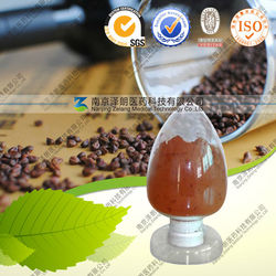 Grape Seed Extract Vitis Vinifera Seed Extract
