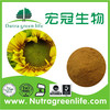 /product-gs/high-quality-free-sample-5-1-sunflower-extract-sunflower-extract-powder-sunflower-powder-60106134411.html