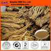 BNP Supply High Quality Dong Quai Extract-Angelica P. E